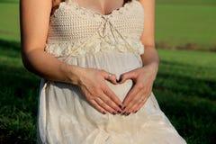 Amor dentro Imagem de Stock Royalty Free