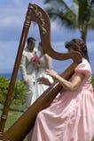 Amor dentro de una arpa Foto de archivo libre de regalías