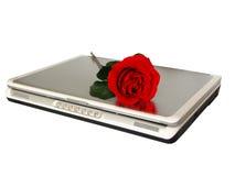 Amor do Cyber Imagens de Stock Royalty Free