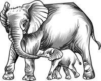 Amor do elefante com bebê ilustração royalty free