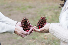 Amor dos pares, comemorando a estação do Natal foto de stock