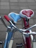 Amor e bicicletas imagens de stock