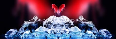 Amor e hielo Imagen de archivo libre de regalías
