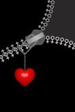 Amor e união Imagens de Stock
