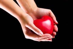 Amor em suas mãos Fotos de Stock Royalty Free