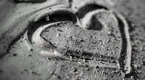 Amor en el fango Foto de archivo