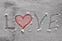 Amor en el hielo Imagen de archivo libre de regalías