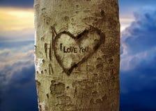 amor en el árbol Imágenes de archivo libres de regalías