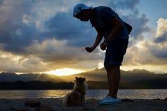 Amor entre el ser humano y los perros Imagenes de archivo
