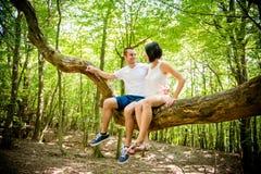 Amor - fecha en árbol Imágenes de archivo libres de regalías