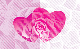 Amor floral Imagens de Stock