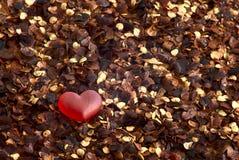Amor gomoso en la pimienta Imagenes de archivo