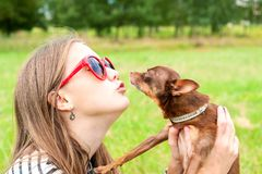 Amor incondicional Adolescente que besa su juguete-Terrier marrón d Imagen de archivo libre de regalías