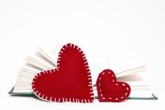 Amor a ler Fotografia de Stock Royalty Free