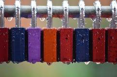 Amor na chuva Foto de Stock Royalty Free