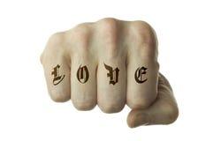 Amor na primeira luta Imagens de Stock Royalty Free