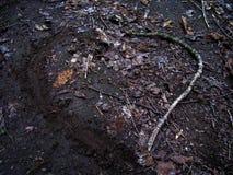 Amor orgânico - estendido pela natureza fotografia de stock