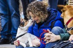 Amor para animais Fotografia de Stock Royalty Free