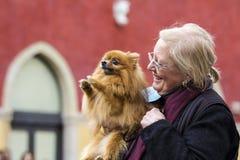 Amor para animais Imagens de Stock