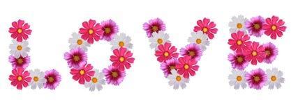 Amor para el diseño floral foto de archivo libre de regalías