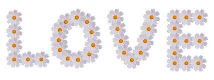 Amor para el diseño floral foto de archivo