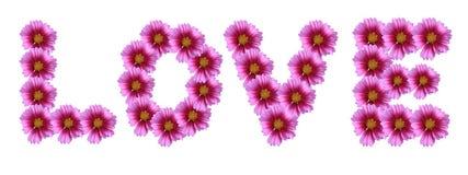 Amor para el diseño floral fotos de archivo