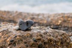 Amor para o mar Fotos de Stock