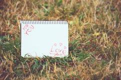 Amor para você Foto de Stock Royalty Free