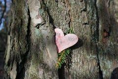 Amor pegado Imagen de archivo