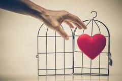 Amor prohibido Foto de archivo libre de regalías