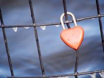 Amor que supera las estaciones Imagen de archivo