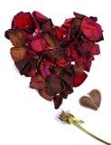 Amor quebrado 2 Foto de Stock Royalty Free