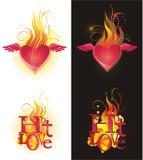Amor quente Fotografia de Stock Royalty Free