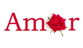 Amor rosa. The word LOVE with the O replaced by a flower in Spanish Royalty Free Stock Photo