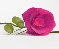 Amor Rose Shows Bloom Petals And romântica Fotografia de Stock Royalty Free