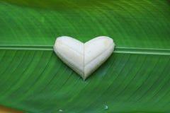 Amor sano Foto de archivo libre de regalías