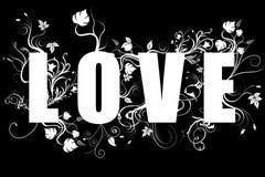 Amor - texto da evolução Fotografia de Stock Royalty Free