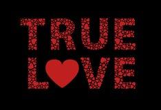 Amor verdadeiro Imagem de Stock