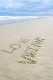 Amor Vietname escrito na areia Imagem de Stock