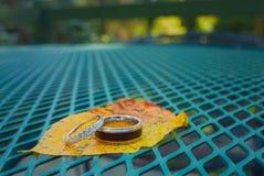 Amor y boda en una hoja en naturaleza imagenes de archivo