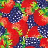 Amoras-pretas e raspberryes Foto de Stock