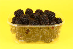 Amoras-pretas frescas no recipiente plástico Fotografia de Stock Royalty Free