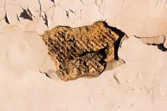 Amorce de mur d'épluchage Photographie stock libre de droits