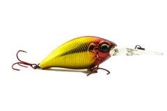 Amorce de poissons Photo stock