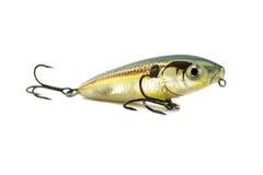 Amorce de poissons Images stock