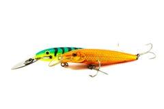 Amorce de poissons Photographie stock libre de droits