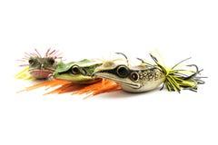 Amorce de poissons Images libres de droits