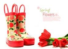 amorce des tulipes de la pluie s d'enfant blanches Images stock