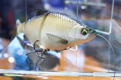 Amorce en plastique de modèle de poissons Photo libre de droits
