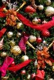 amorce l'arbre de bandes rouge pourpré de Noël Images libres de droits